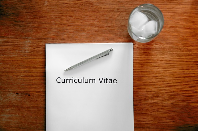 a guide to writing the best curriculum vitae for the job market cosmobccom edublog